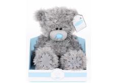 Me to You Basic teddy bear 17 cm