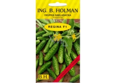Holman F1 Regina Gherkins 2.5 g