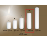 Lima Gastro plain candle white cylinder 60 x 220 mm 1 piece
