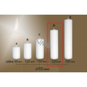 Lima Gastro plain candle white cylinder 60 x 220 mm 1 piece