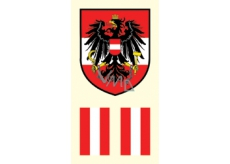 Arch Tattoo decals for face and body Austria flag 2 motif