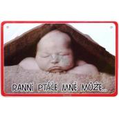 Nekupto Humor in the Czech Republic humorous sign 15 x 10 cm 1 piece