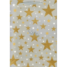 Ditipo Gift Paper Bag Glitter Gray, Gold Stars 26.4 x 13.6 x 32.7 cm QAB