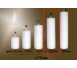 Lima Gastro smooth candle white cylinder 70 x 250 mm 1 piece