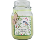 Bohemia Gifts & Cosmetics Dear mothers gift scented candle in glass burning time 105-120 hours 510 g