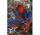 Ditipo Dárková papírová taška dětská L Spiderman s pavučinou 32 x 12 x 26 cm 2928 003
