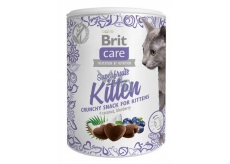 Brit Care Cat Snack Crispy chicken treat with scythe and blueberry supplementary food for kittens, from 6 weeks of age 100 g
