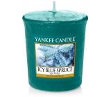 YC.votiv / Icy Blue Spruce