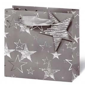 BSB Luxury gift paper bag 23 x 19 x 9 cm Winter coatings VDT 411 - CD