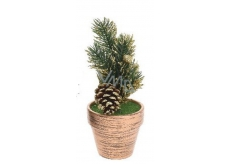 Decoration of Christmas twig in flower-gold pot