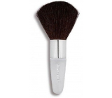 DNG powder brush 9238 2382