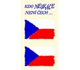 Arch Tetovací obtisky na obličej i tělo Česká vlajka 2 motiv