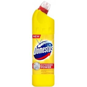 Domestos 24h Citrus Fresh tekutý desinfekční a čisticí prostředek 750 ml