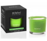 MF.Natural Scented Candle 180g / Green Fig & Iris 11/18