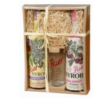 Kitl Syrob Bio Elderflower syrup 500 ml + Raspberry with flesh syrup for homemade lemonade 500 ml + glass 200 ml, gift box