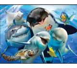 3D Magnet - Ocean Selfie 9 x 7 cm