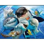 Prime3D Magnet - Ocean Selfie 9x7cm