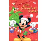 Ditipo Gift paper bag 26.4 x 12 x 32.4 cm Disney Mickey Mouse holds decorations
