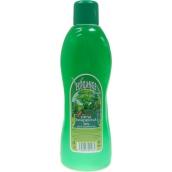 Elegance Forest bath foam 1 l