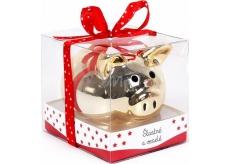 Albi Moneybox Piggy bank Happy and happy 6 cm