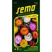Semo Immortelle for drying 0,5 g