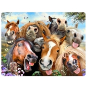 3D Postcard- Selfie Horses 16 x 12 cm
