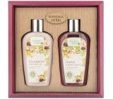 Bohemia Gifts & Cosmetics Castanum Horse chestnut extract shower gel 250 ml + hair shampoo 250 ml, cosmetic set