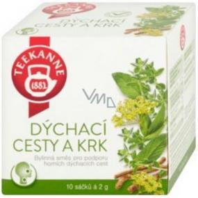 Teekanne Respiratory and neck herbal tea infusion bags 10 x 2 g