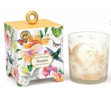 Michel Design Works Paradise Soy handmade scented candle in glass 184g
