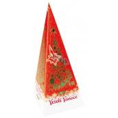 Liran Christmas package Green tea, orange and cinnamon dehydrates, against excess cholesterol, strengthens bones 20 x 2 g