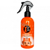 Just 4 Dogs Orange Infusion Rinse-free shampoo for dogs 300 ml