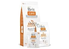Brit Care Jehněčí + rýže pro dospělé psy 1-7 let středních plemen 10-25 kg 3 kg Hypoalergenní kompletní krmivo