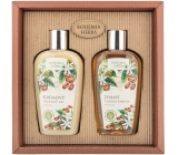 Bohemia Gifts Caffeine shower gel 250 m + shampoo 250 ml, cosmetic set