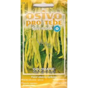 Seva - Flora Kidney bean Goldmarie 15 g