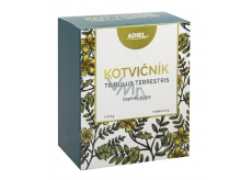 Adiel Kotvičník tea affects the genitals and hormonal activity of 15 sachets