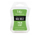 WoodWick Palm leaf - Palmový list vonný vosk do aromalampy 22.7 g