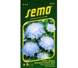 Semo Astra Chinese Duchesse Silvery Blue 0.5 g
