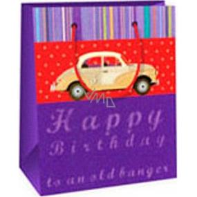 Ditipo Gift paper bag 11.4 x 6.4 x 14.6 cm purple car
