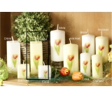 Lima Flower Tulip scented ivory candle with decal tulip prism 45 x 120 mm 1 piece