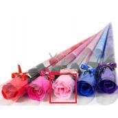 Gift rose rose 19 pink 2096