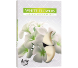 Bispol Aura White Flowers - White flowers of fragrant tealights 6 pieces