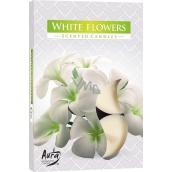 Bispol Aura White Flowers s vůní bílých květů vonné čajové svíčky 6 kusů