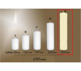 Lima Gastro smooth candle ivory cylinder 60 x 300 mm 1 piece