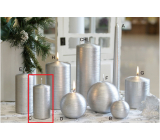 Lima Alfa candle silver cylinder 50 x 100 mm 1 piece