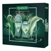 Palmolive Purifying Clay shower gel with clay 250 ml + liquid soap dispenser 250 ml, cosmetic set