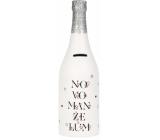 Albi Money box bottle Newlyweds 30 cm x 15 cm