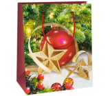 Ditipo Gift paper bag 11.5 x 6.5 x 14.5 cm red flask with gold star E