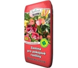 Peat Soběslav Soil for houseplants 20 l
