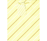 Ditipo Gift paper bag 18 x 23 x 10 cm yellow white-brown lines