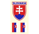 Arch Tattoo Decals on Face and Body Slovakia flag 2 motifs